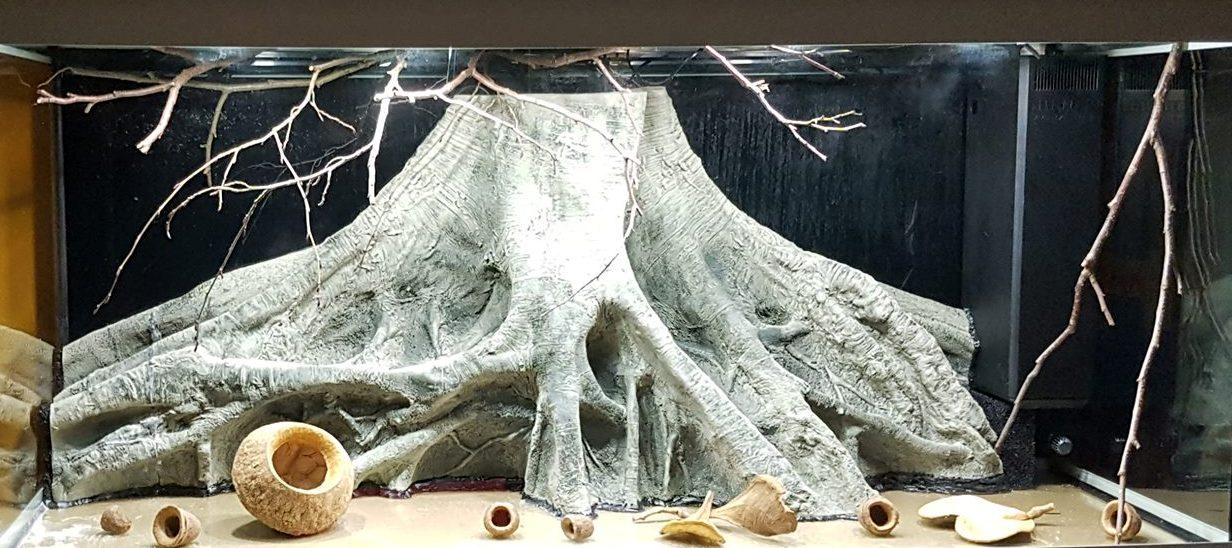 Orinoco Root in the aquarium