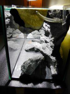 Intslace akvarijního pozadí Alimar Grez Gneiss