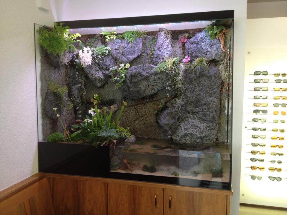 Paludarium in a Swiss shop