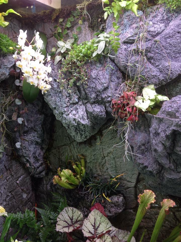 ARSTONE rocks in paludarium