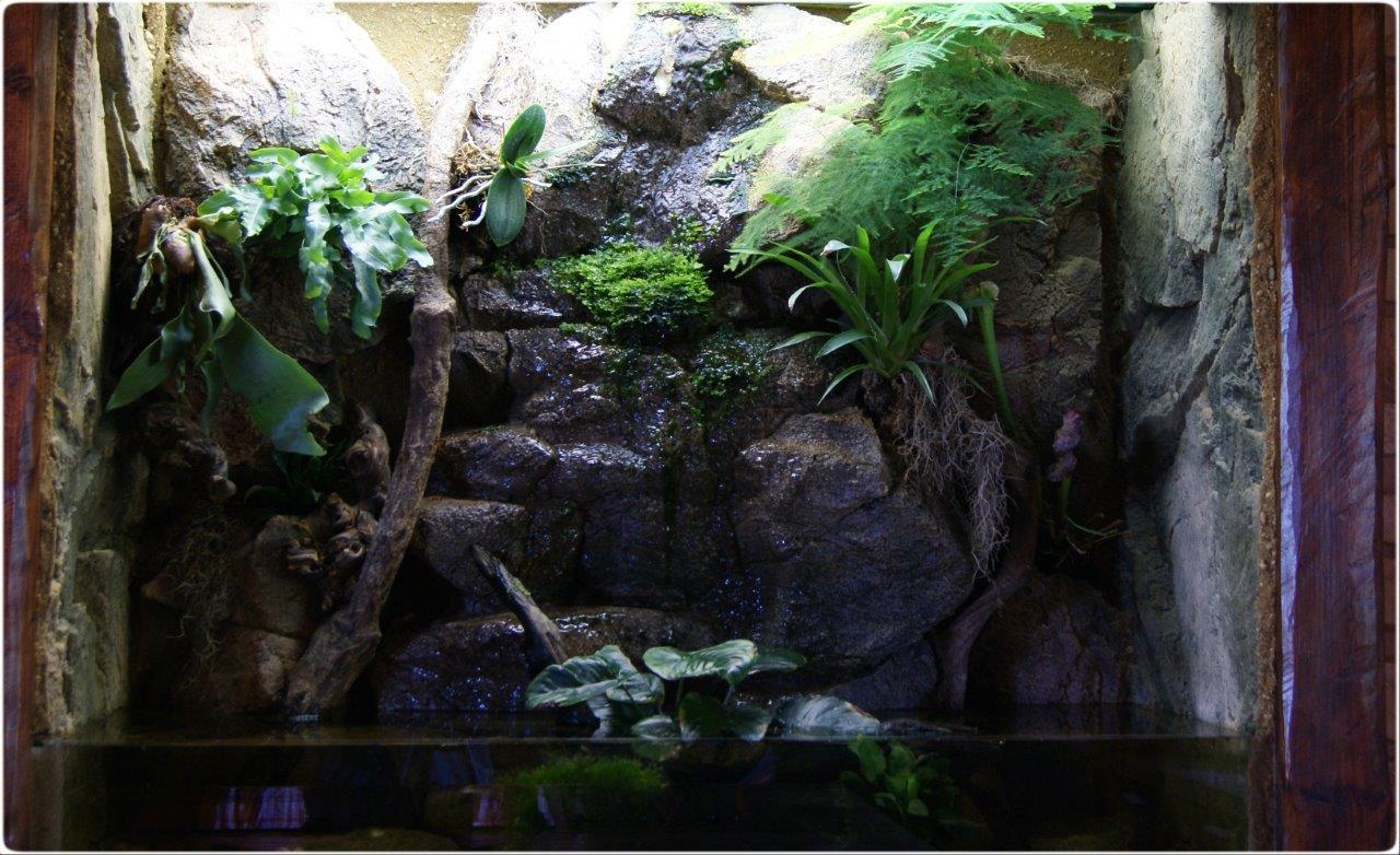 Wasserfall und Felsen von ARSTONE im Terrarium