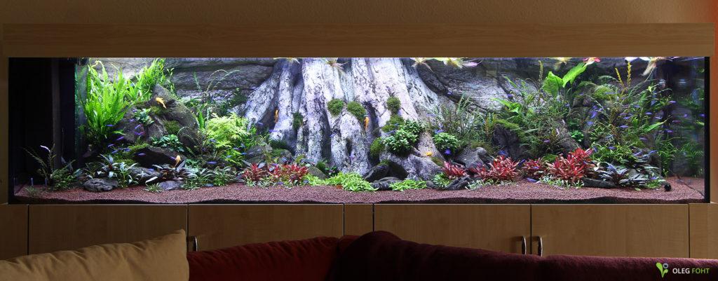 "Amazonas XL - ""Rescaping"" nach 3 Monaten"