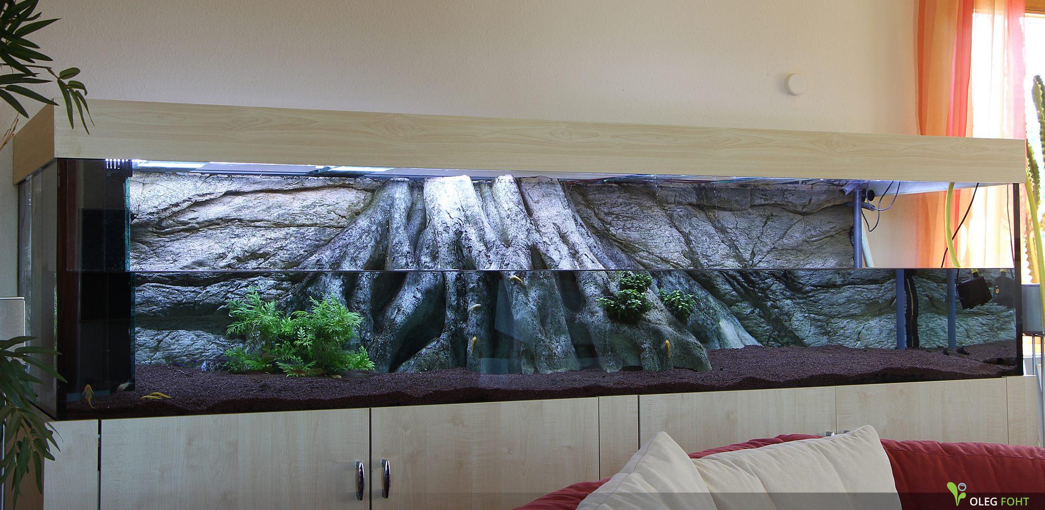 Amazonas XL im Aquarium - Anfang der Dekoration