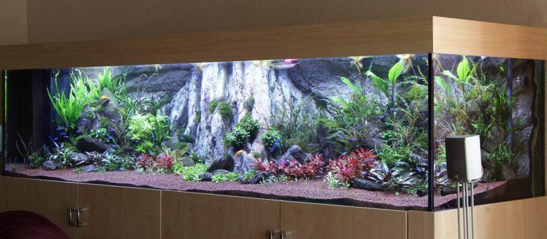 Amazonas XL pozadí od ARSTONE v akváriu