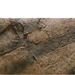 Kerala Basalt Gneiss background