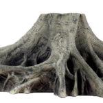 regenwoud aquarium wortel Orinoco 200x60 cm