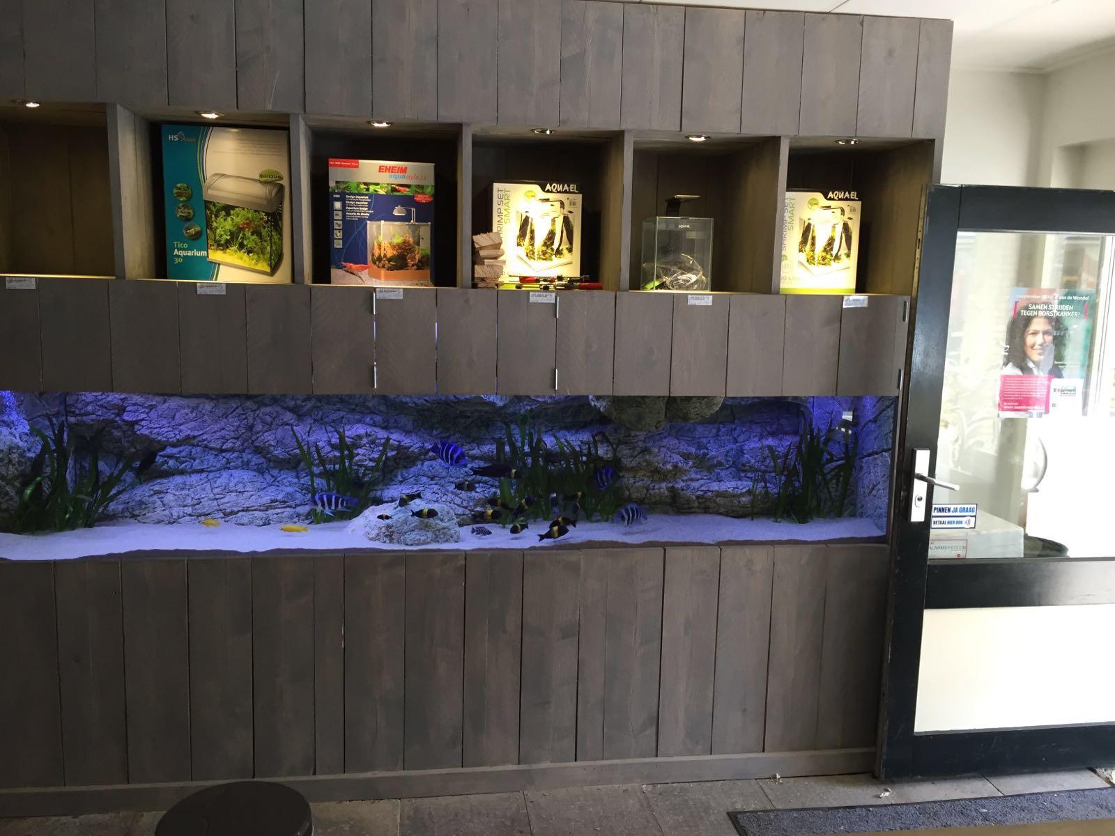 Het aquarium in de winkel in Nederland