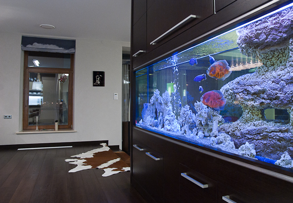Saltwater aquarium design arstone aquarium backgrounds for Aquarium interior designs pictures