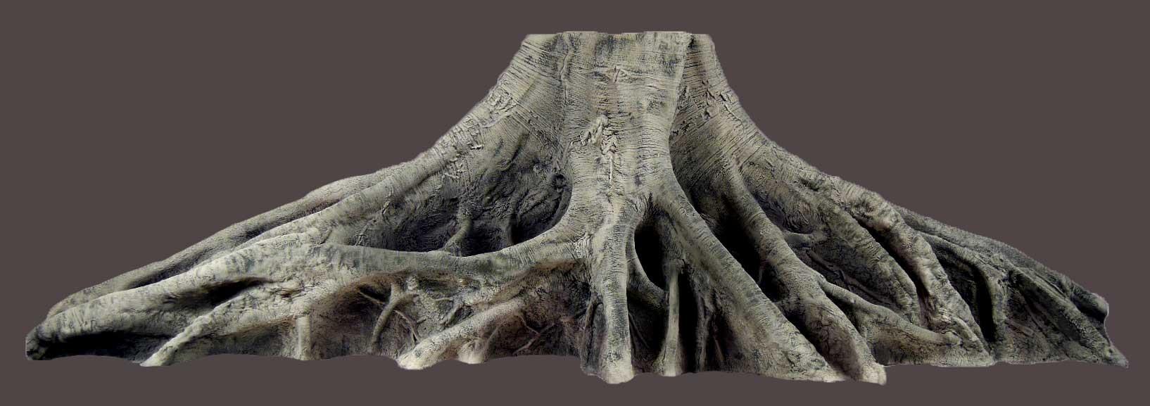 Orinoco Aquarium Wurzel