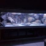 Aquarium 3D Module Rock X0 44 x 18 x 13 cm