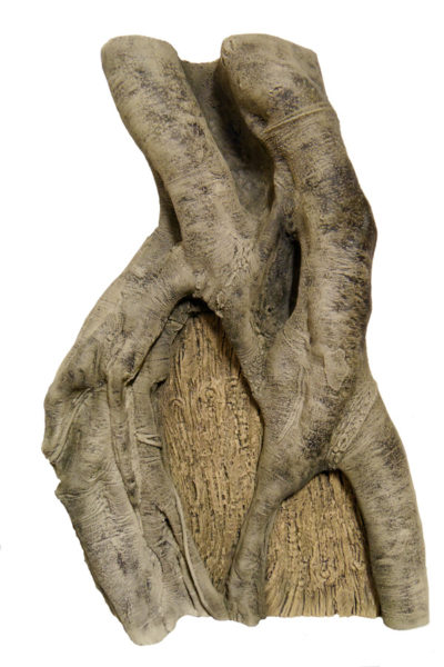 Rainforest Root 4 - 60 x 80 cm