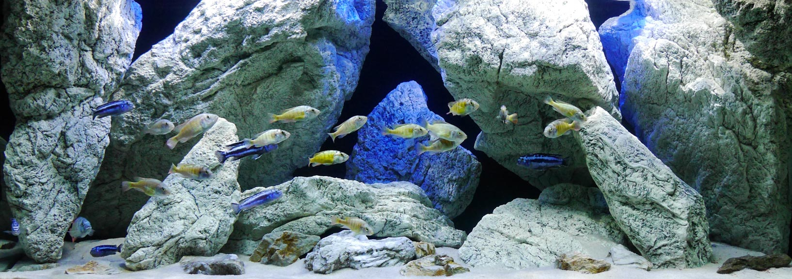 3D Aquarium rotsen en stenen