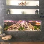 NEW Amazonas XL 3D root aquarium background by ARSTONE photo review
